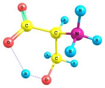 Аминокислоты: польза и вред