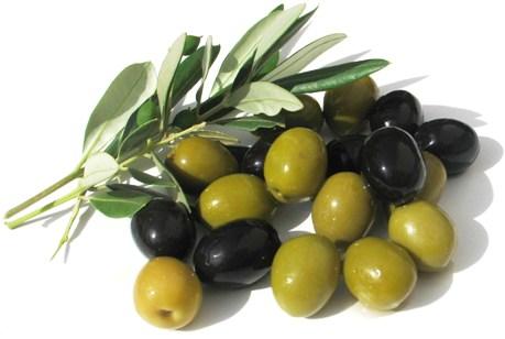 Картинки по запросу оливка
